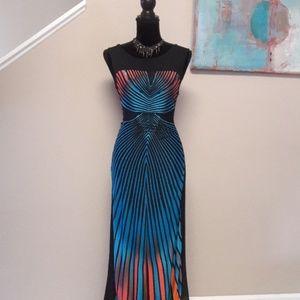 J/ Form Fitting/ Print/ Maxi Dress